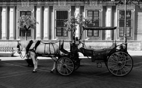 Wedding Photography LightStrikes Charlotte Raya Kostevska
